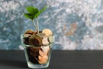 Baufinanzierung: Kostenlose Beratung